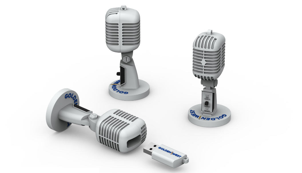 Microphone, customer flash drive